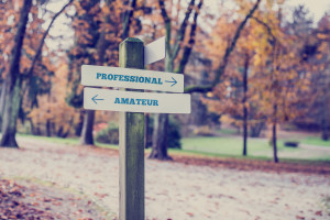 Rustic wooden sign in an autumn park with the words Professional - Amateur with arrows pointing in opposite directions in a conceptual image.